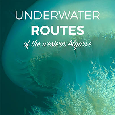 Underwater Routes of the Western Algarve-1